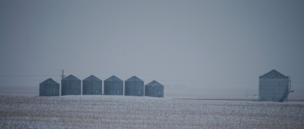 Silo Family as seen from I-94 near Steele, ND