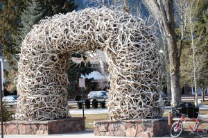Antler Arch of Jackson