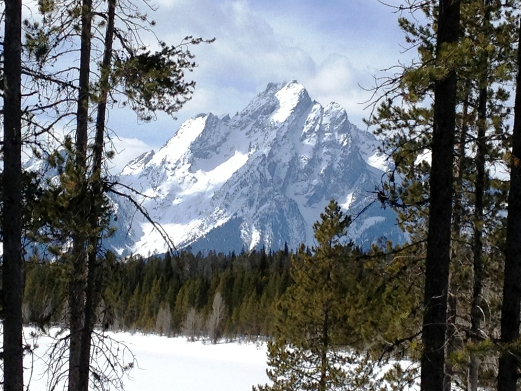 Mt. Moran as seen from Colter Bay Lodge - Taken with my iPhone!