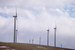 Turbines from the Wolverine Creek Wind Farm