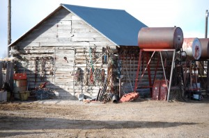 An old barn with junk on it near Thornton, ID
