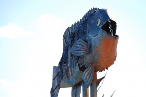 "Giant Blue Gill at ""Fisherman's Dream"""
