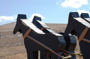 "The Wooden Horses at ""Teddy Rides Again"""