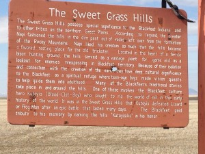 The Sweet Grass Hills