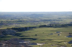 Sage Creek Valley in the Badlands