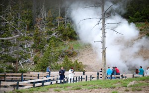 Steam from Hot Springs - Yellowstone National Park