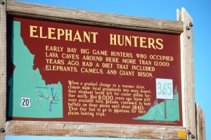 Land of Elephant Hunters