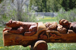 Fun chain saw carving near Sawtooth City