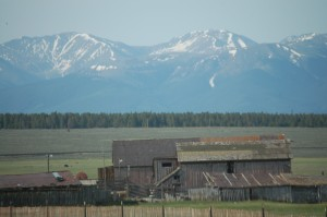 Old barns in the shadow of the Sawatch Range as seen from US 24