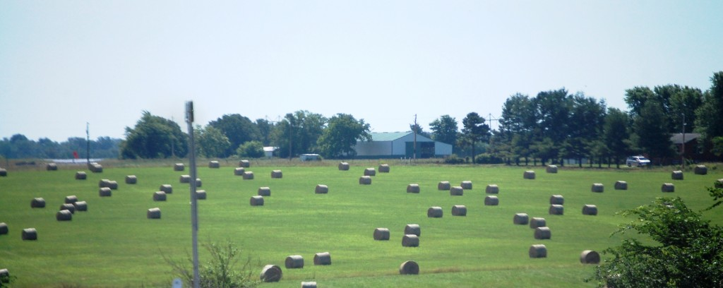 Rolled hay bales on US 60 east of Seymour, Missouri