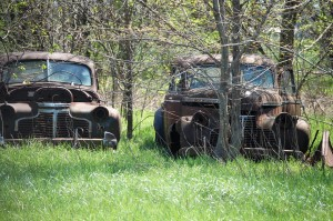 Old cars in trees near Albatross, Missouri