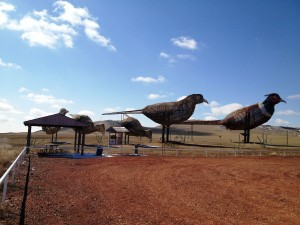Huge Pheasant Family - by Gary Greff on Enchanted Highway in North Dakota