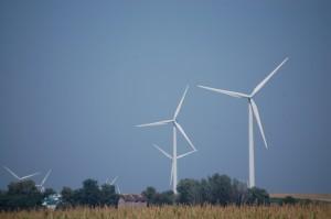 Wind Farm near Bloomington, IL