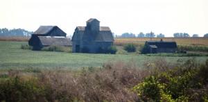 Pastoral scene north of Swedesburg, IA on US 218