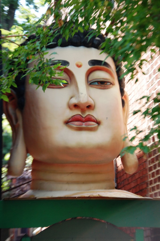 Buddha Head adorns the top of the Front Door to the Gallery